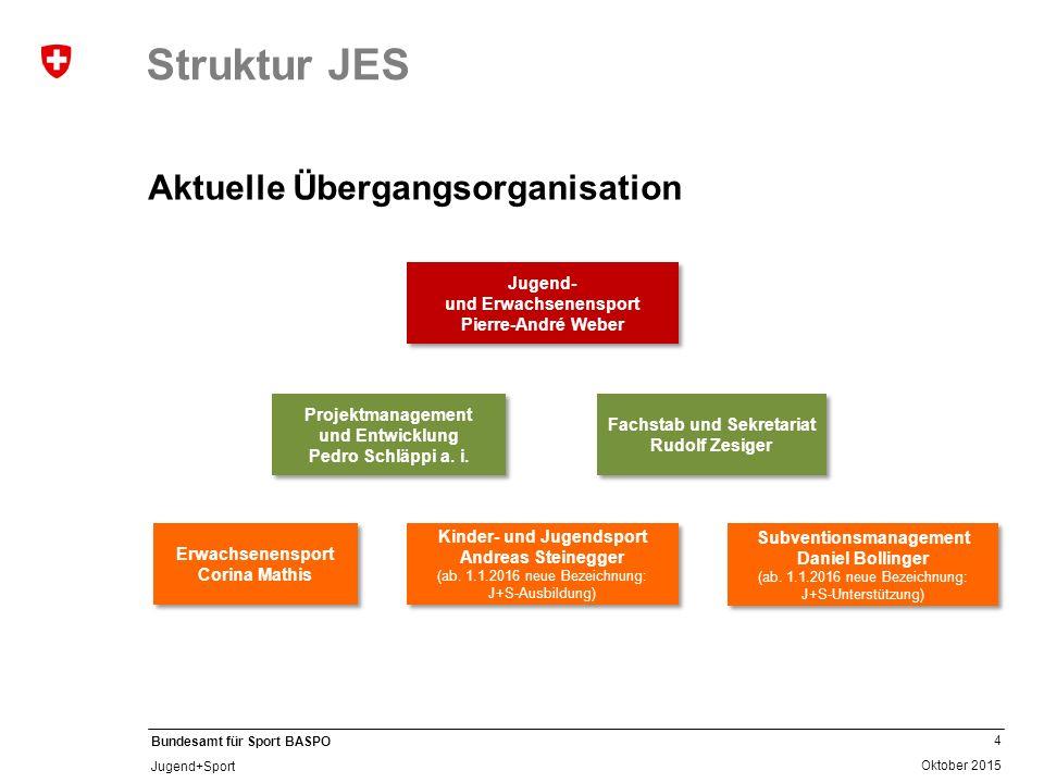 Struktur JES Aktuelle Übergangsorganisation