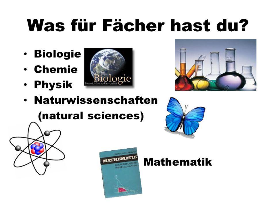 Was für Fächer hast du Biologie Chemie Physik Naturwissenschaften