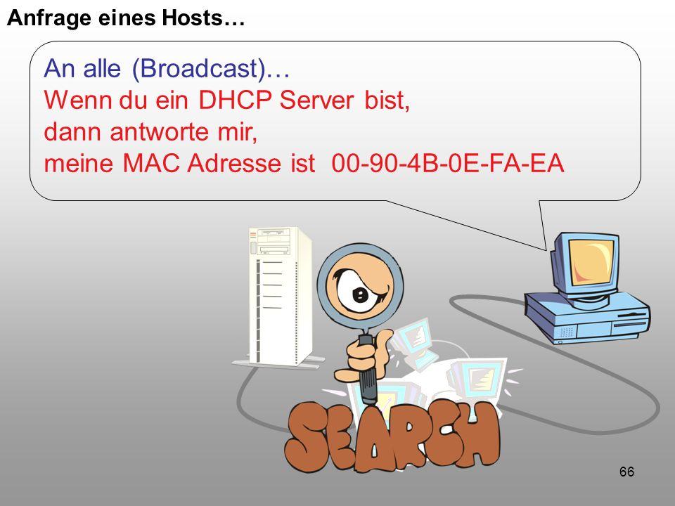 Wenn du ein DHCP Server bist, dann antworte mir,
