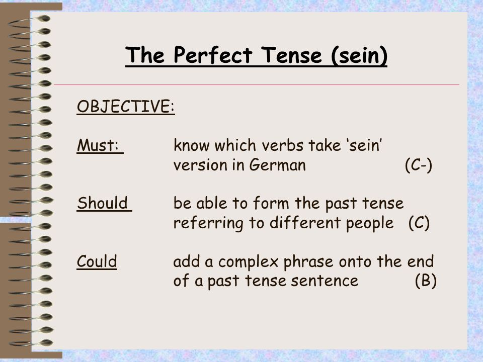 The Perfect Tense (sein)