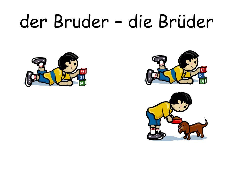 der Bruder – die Brüder