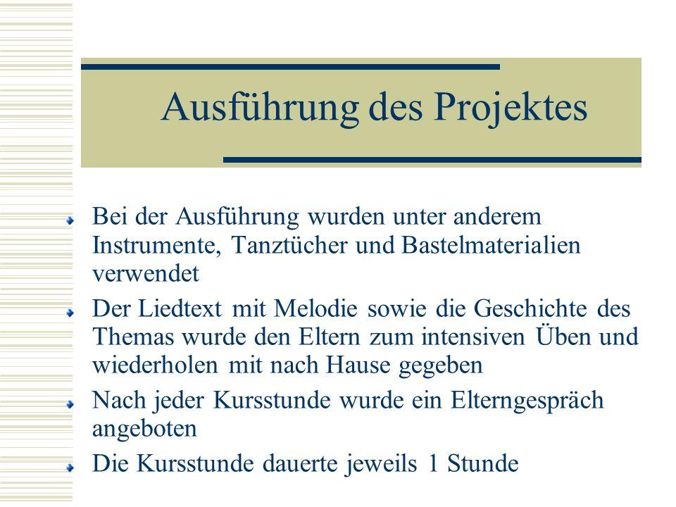 Ausführung des Projektes