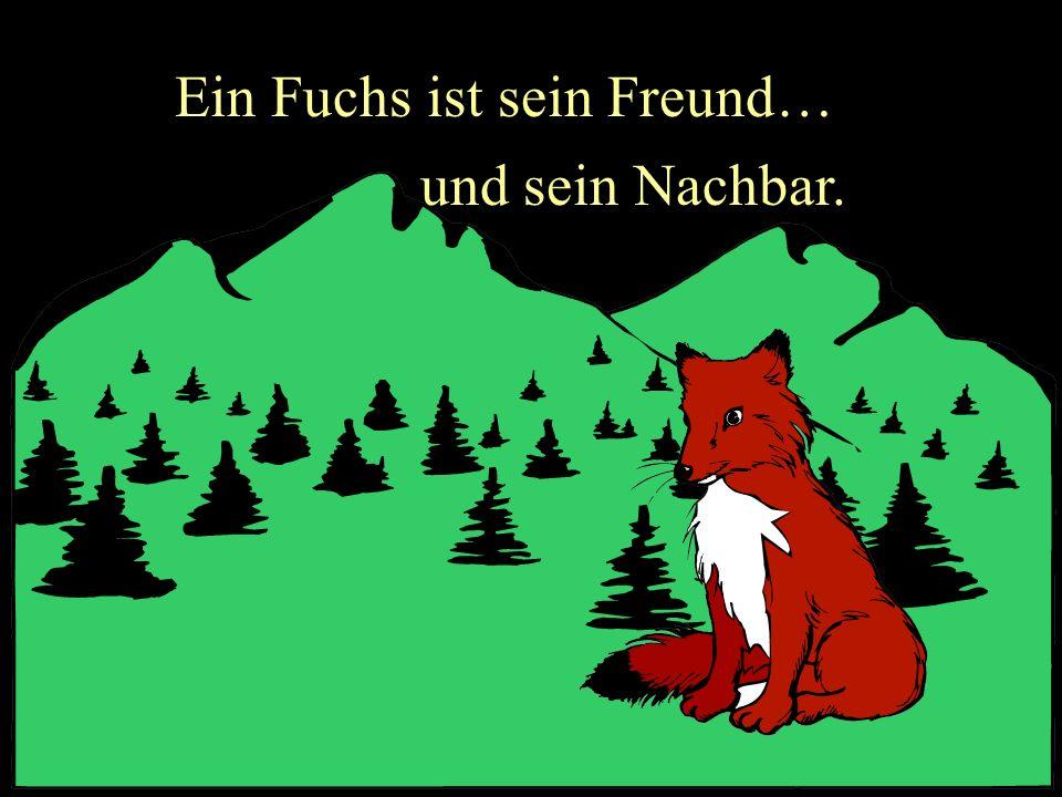 Ein Fuchs ist sein Freund…
