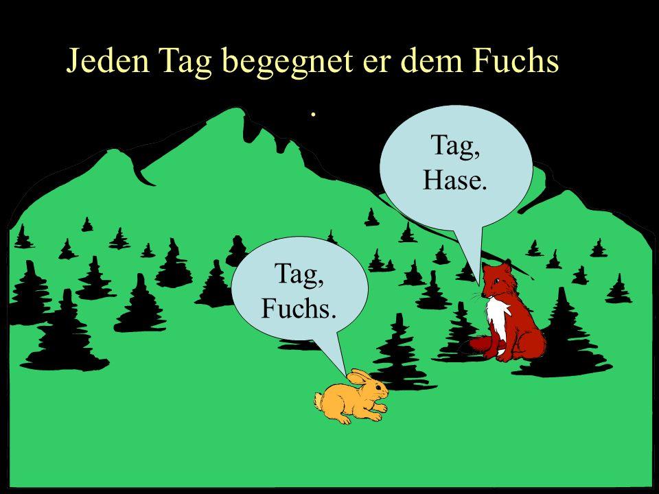 Jeden Tag begegnet er dem Fuchs .
