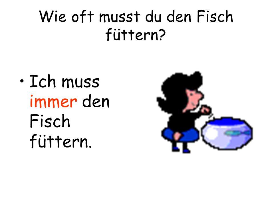 Wie oft musst du den Fisch füttern