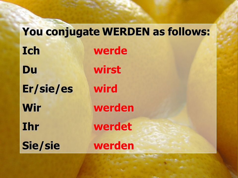 You conjugate WERDEN as follows: