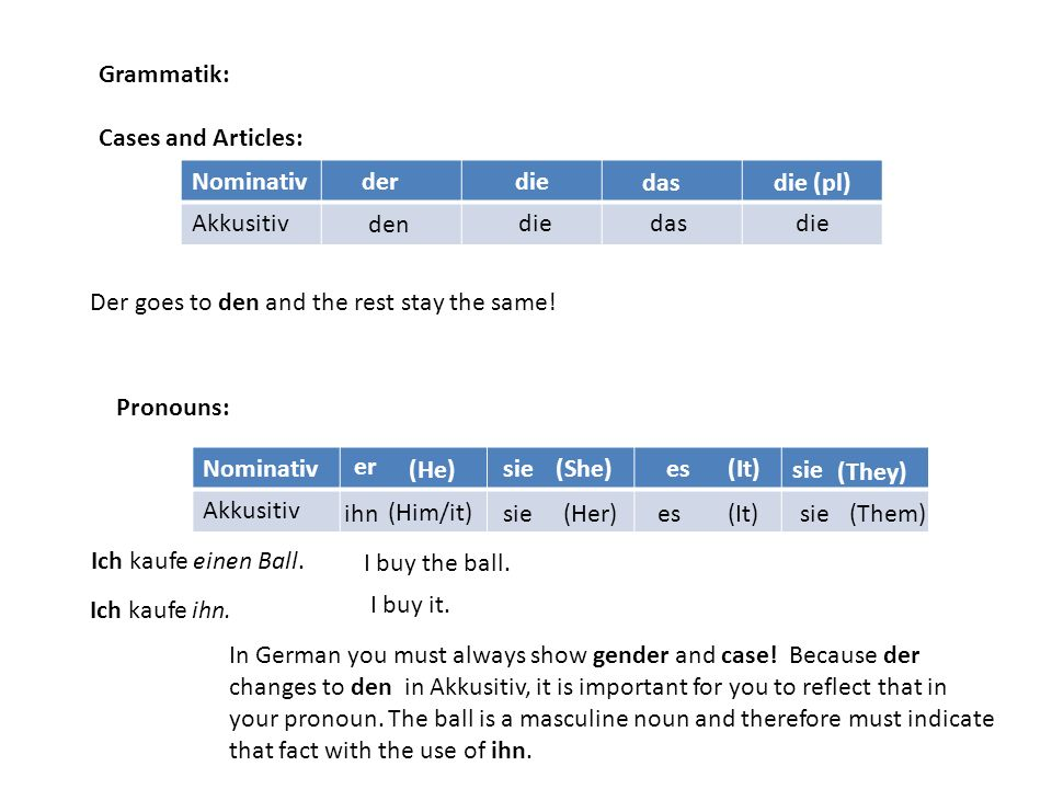 Grammatik: Cases and Articles: Nominativ. Akkusitiv. der. die. das. die (pl) den. die. das.