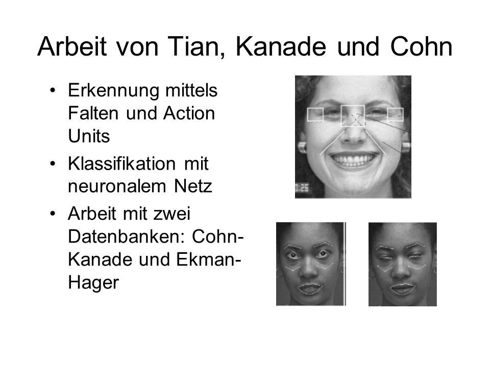 Arbeit von Tian, Kanade und Cohn