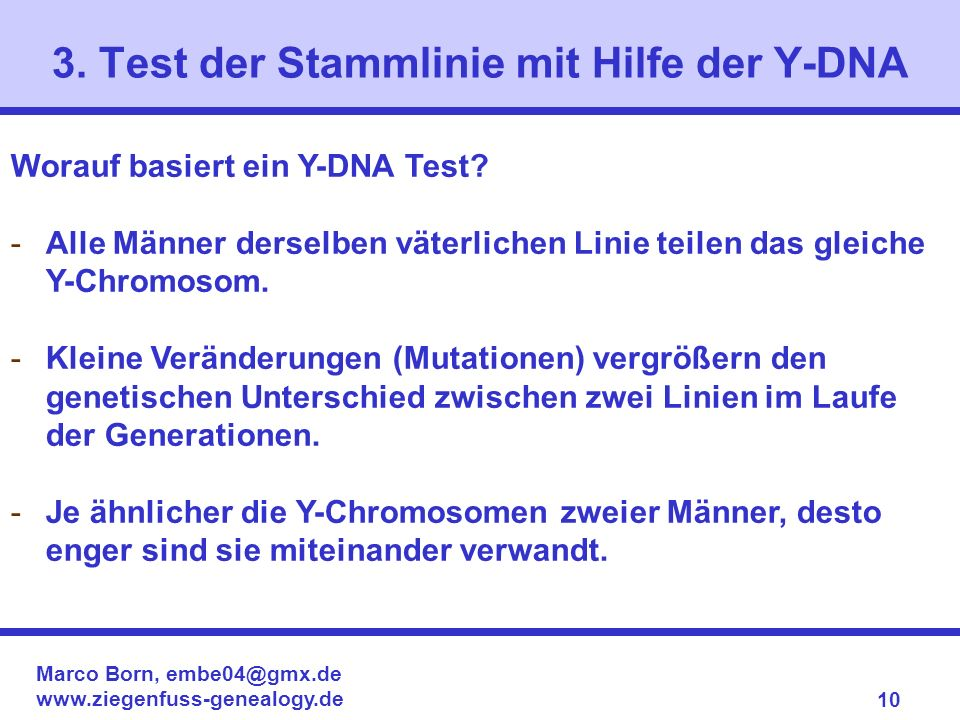 3. Test der Stammlinie mit Hilfe der Y-DNA