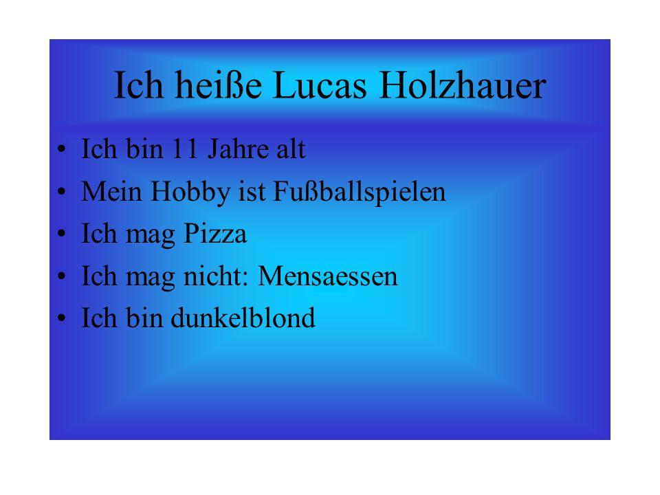 Ich heiße Lucas Holzhauer