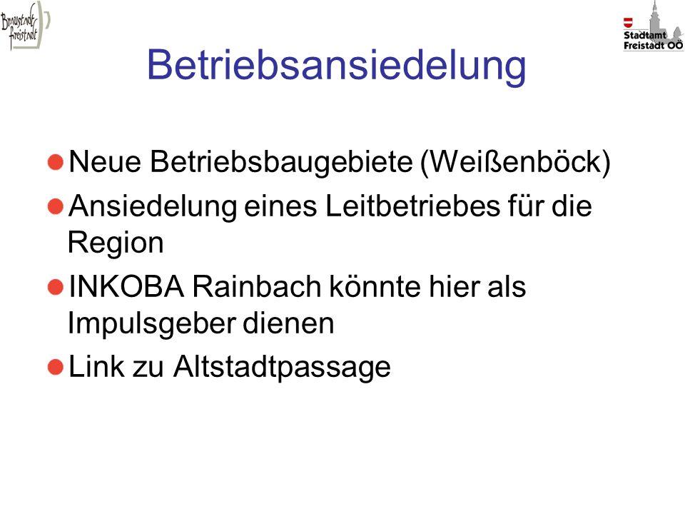 Betriebsansiedelung Neue Betriebsbaugebiete (Weißenböck)