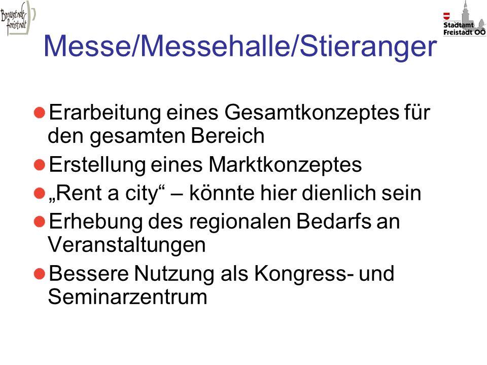 Messe/Messehalle/Stieranger
