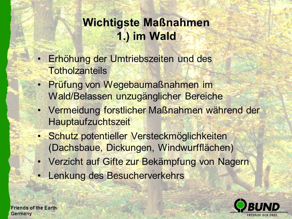 Wichtigste Maßnahmen 1.) im Wald