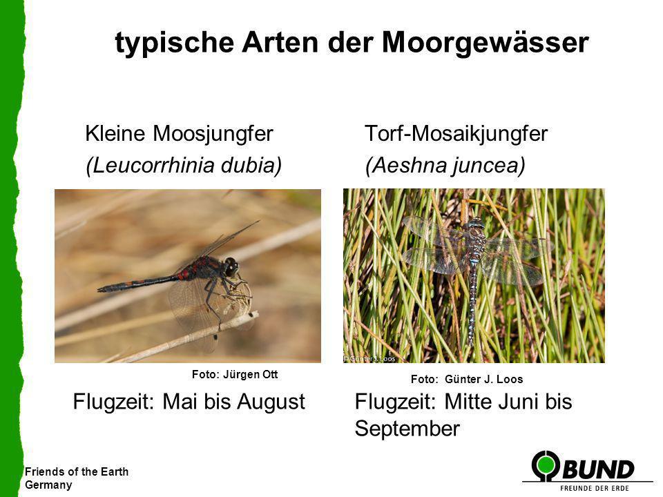 typische Arten der Moorgewässer