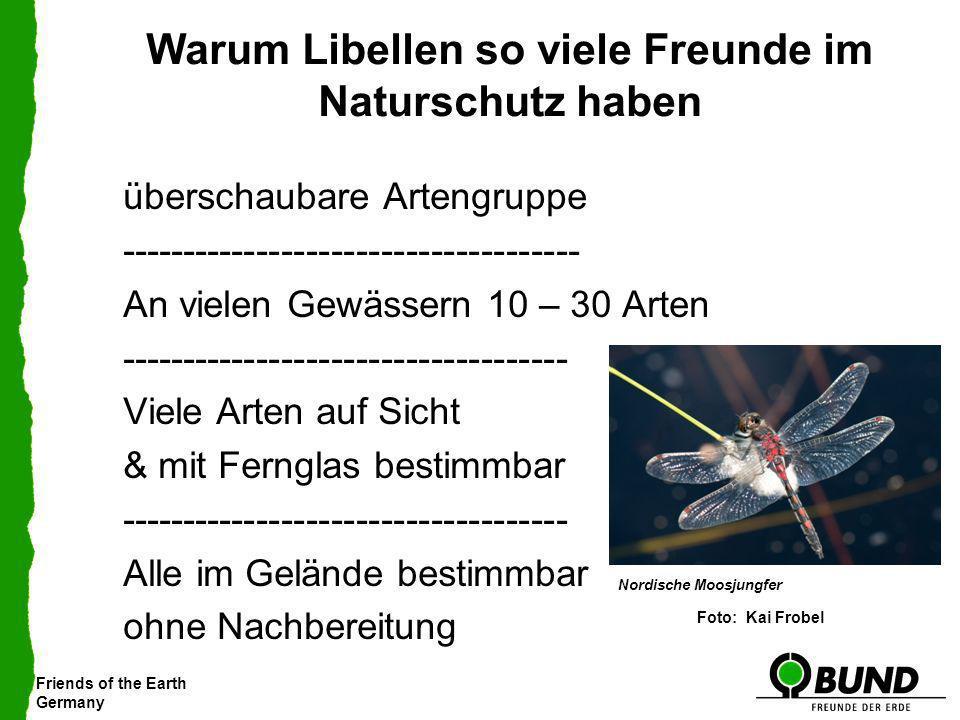 Warum Libellen so viele Freunde im Naturschutz haben