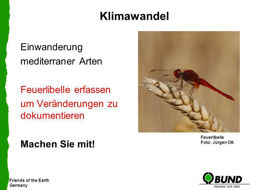 Klimawandel Einwanderung mediterraner Arten Feuerlibelle erfassen um Veränderungen zu dokumentieren Machen Sie mit!