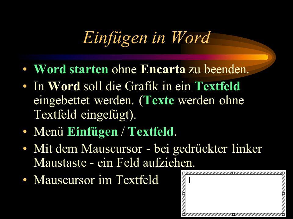 Einfügen in Word Word starten ohne Encarta zu beenden.