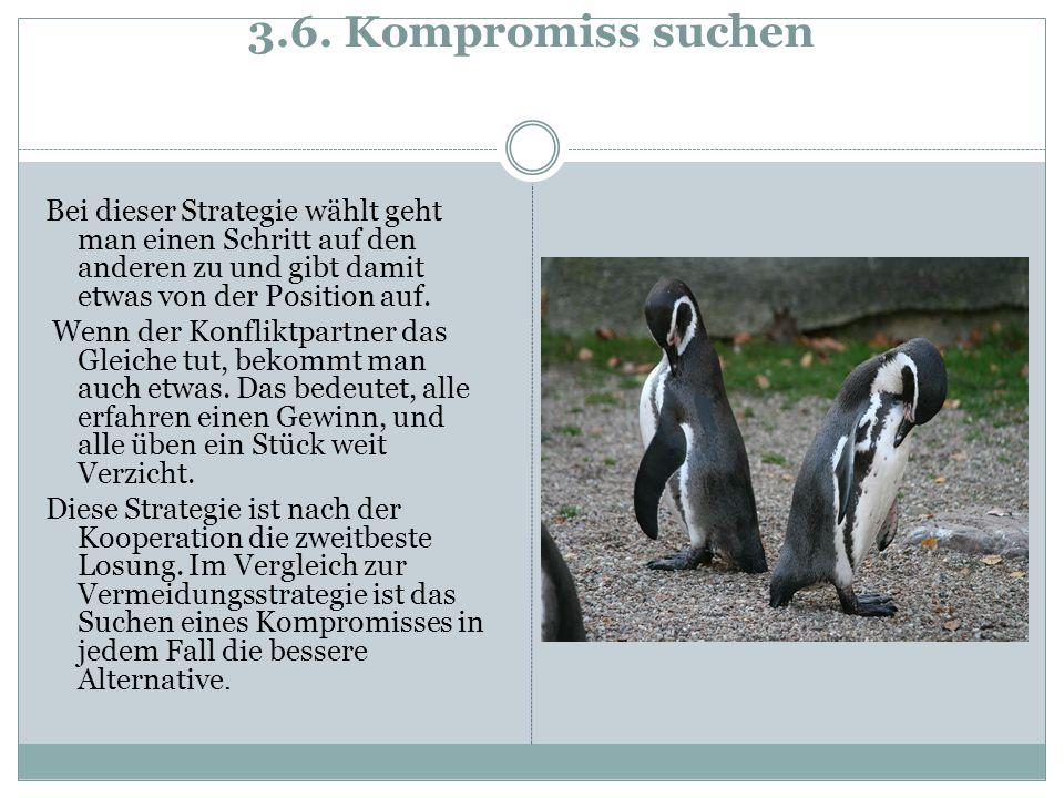 3.6. Kompromiss suchen Bei dieser Strategie wählt geht man einen Schritt auf den anderen zu und gibt damit etwas von der Position auf.