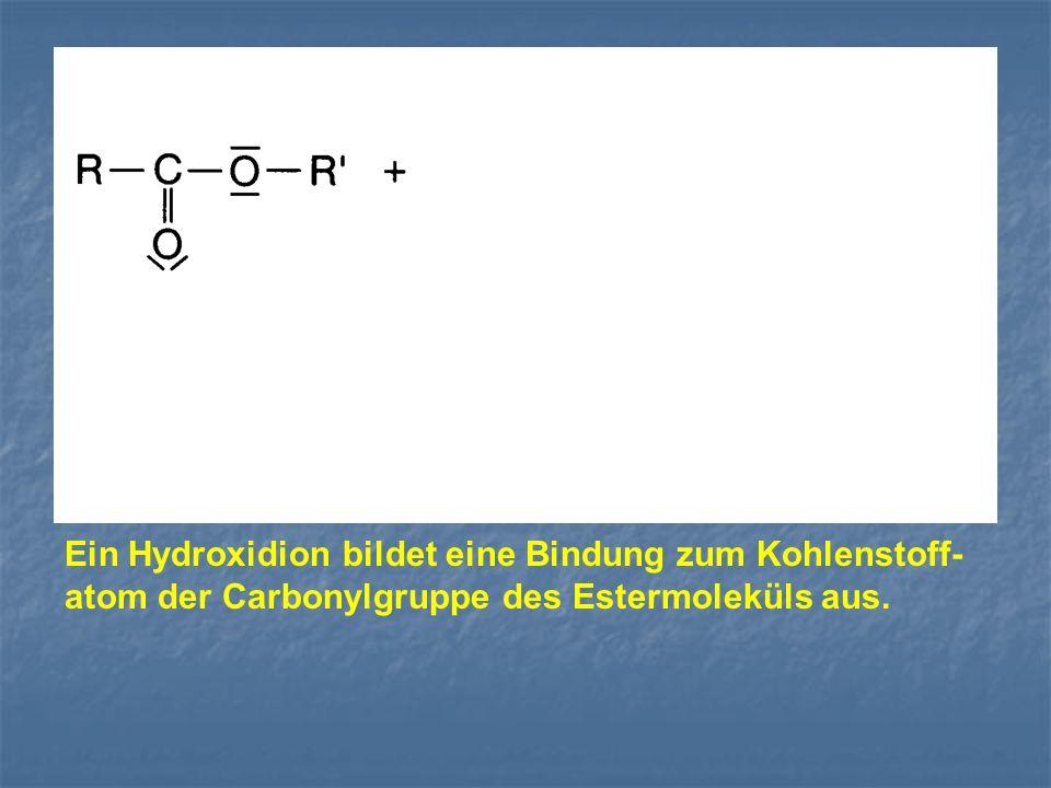 Ein Hydroxidion bildet eine Bindung zum Kohlenstoff-atom der Carbonylgruppe des Estermoleküls aus.