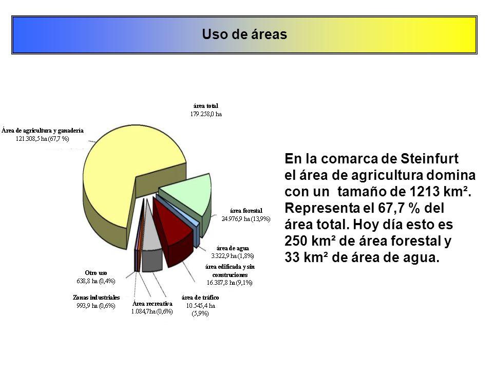 Uso de áreas En la comarca de Steinfurt. el área de agricultura domina. con un tamaño de 1213 km².