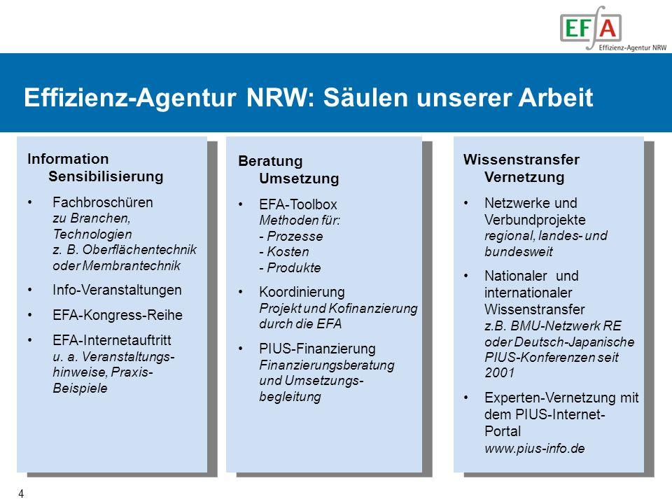 Effizienz-Agentur NRW: Säulen unserer Arbeit