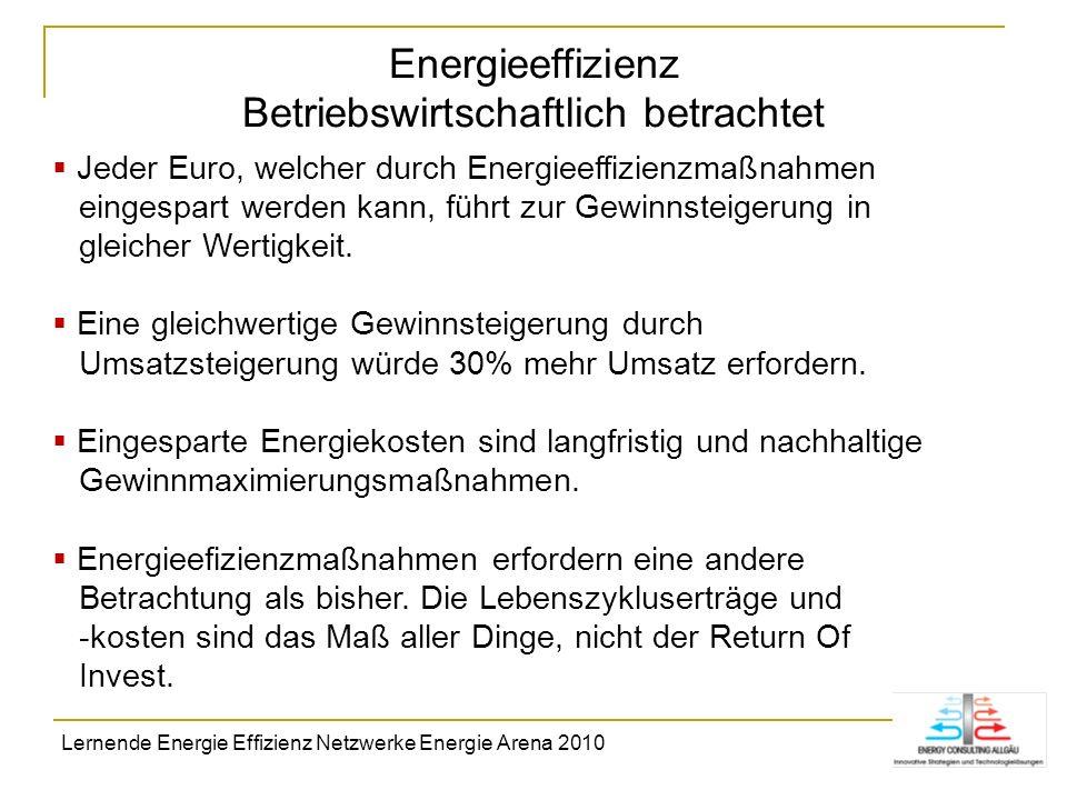 Energieeffizienz Betriebswirtschaftlich betrachtet