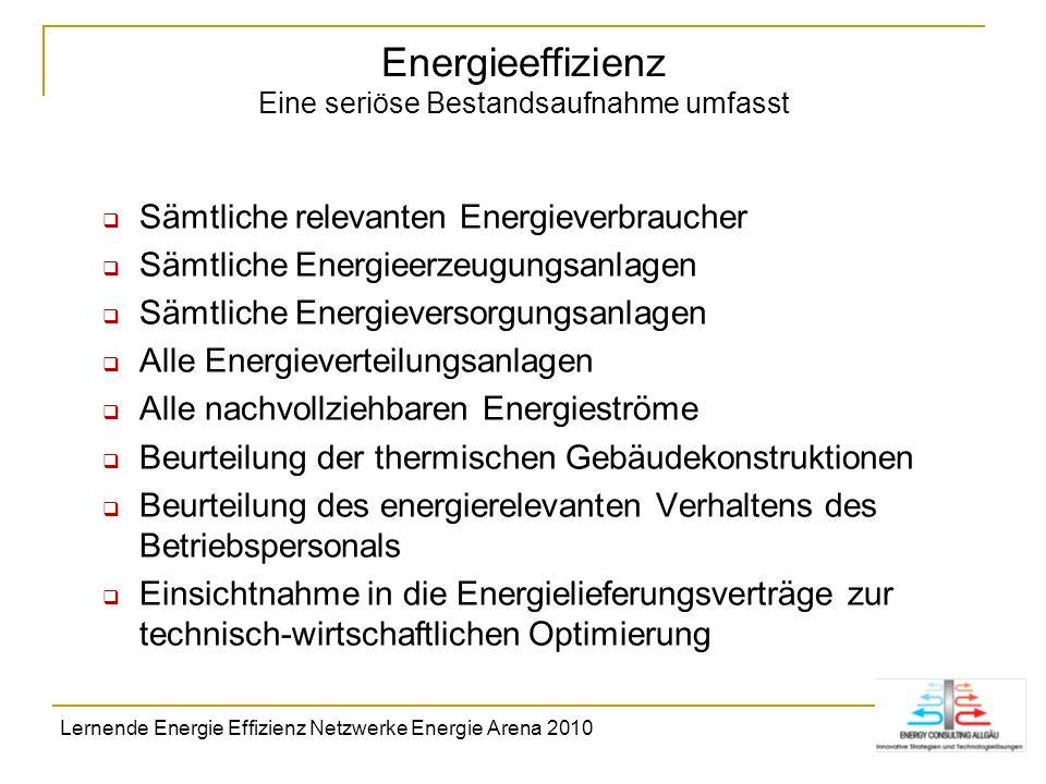 Energieeffizienz Eine seriöse Bestandsaufnahme umfasst