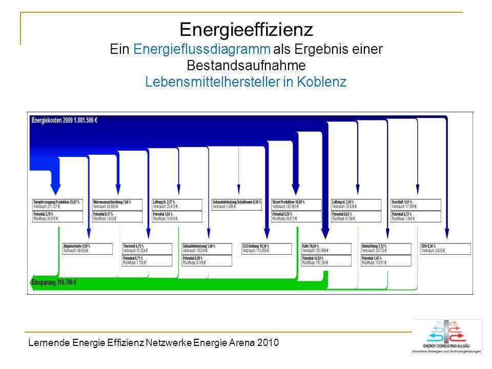 Energieeffizienz Ein Energieflussdiagramm als Ergebnis einer Bestandsaufnahme Lebensmittelhersteller in Koblenz
