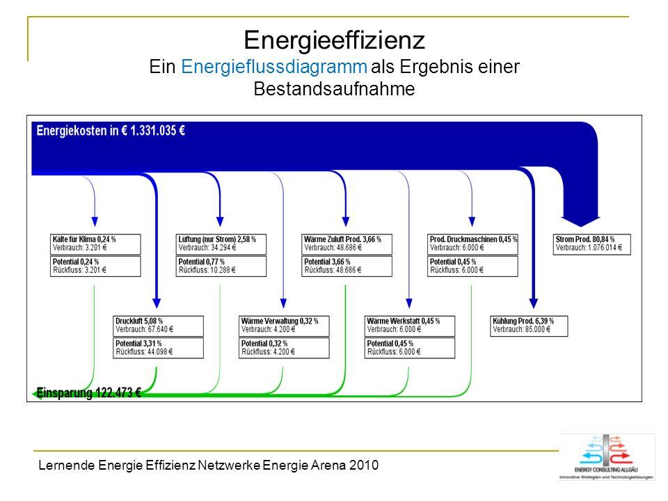 Energieeffizienz Ein Energieflussdiagramm als Ergebnis einer Bestandsaufnahme