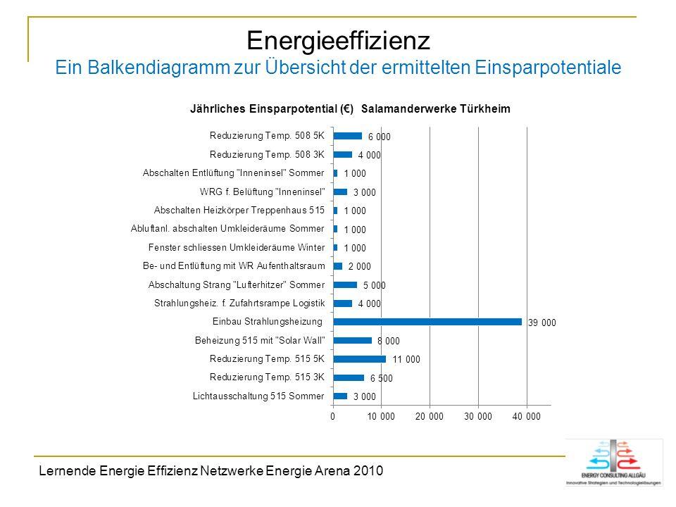 Energieeffizienz Ein Balkendiagramm zur Übersicht der ermittelten Einsparpotentiale