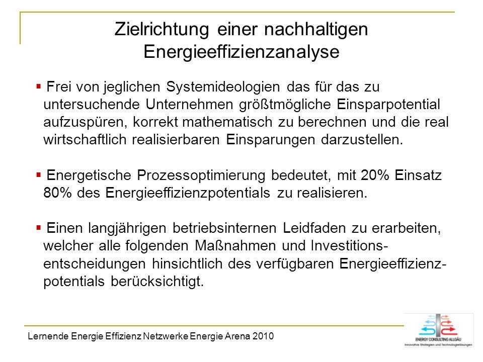 Zielrichtung einer nachhaltigen Energieeffizienzanalyse