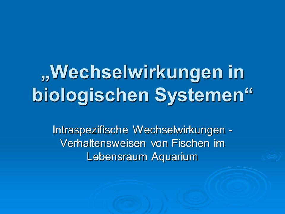 """""""Wechselwirkungen in biologischen Systemen"""