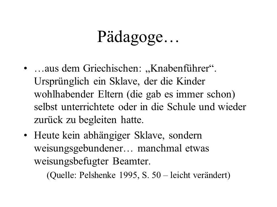 (Quelle: Pelshenke 1995, S. 50 – leicht verändert)