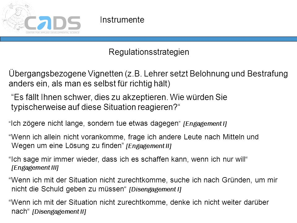 Regulationsstrategien
