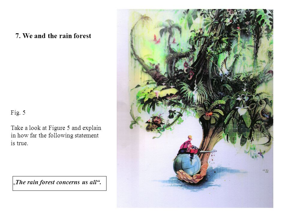 7. We and the rain forest Fig. 5
