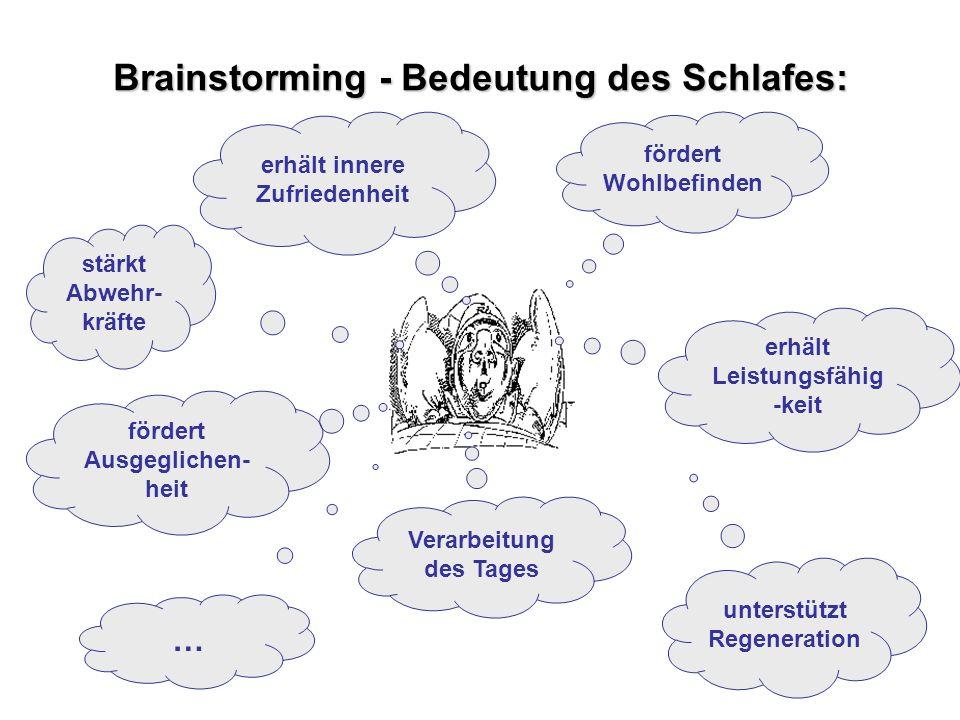 Brainstorming - Bedeutung des Schlafes: