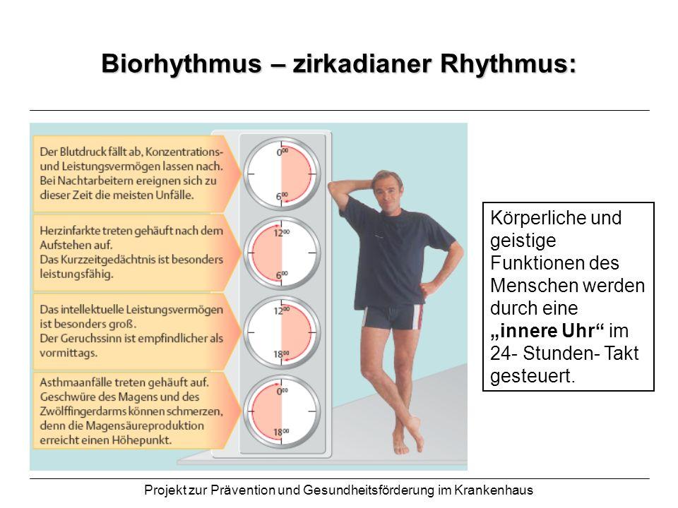 Biorhythmus – zirkadianer Rhythmus: