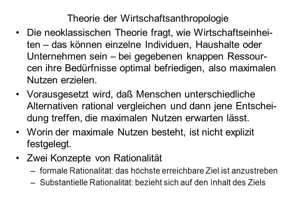 Theorie der Wirtschaftsanthropologie