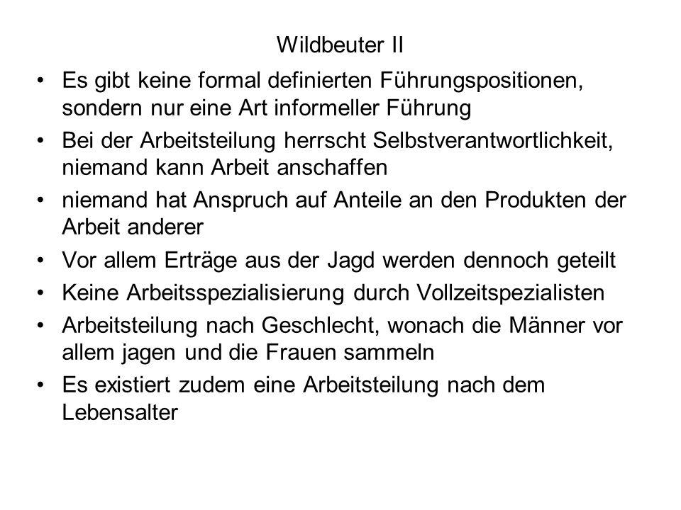 Wildbeuter II Es gibt keine formal definierten Führungspositionen, sondern nur eine Art informeller Führung.