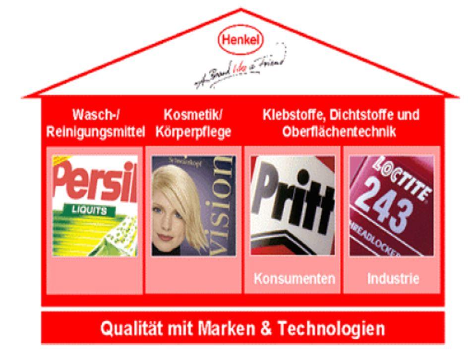 Holding: (Dachgesellschaft)