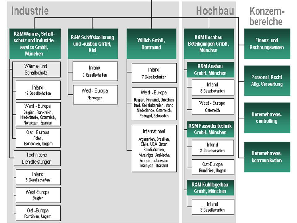 Matrixorganisation, Mehrlinien und Holding: