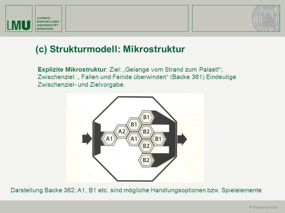 (c) Strukturmodell: Mikrostruktur