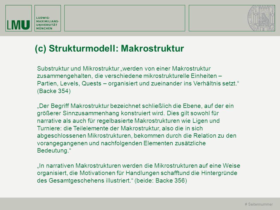 (c) Strukturmodell: Makrostruktur
