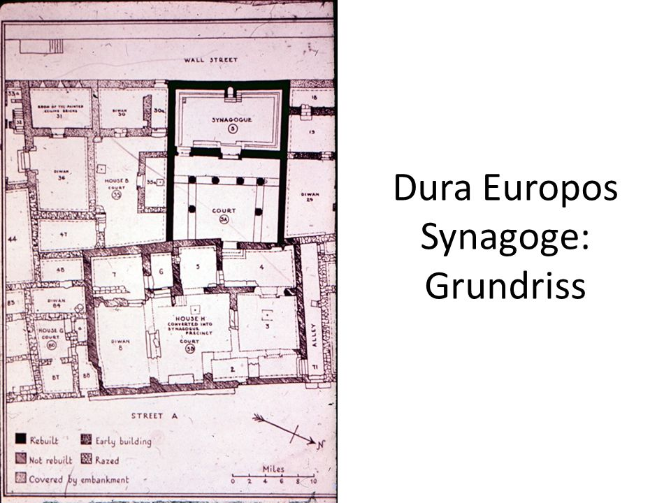 Dura Europos Synagoge: Grundriss