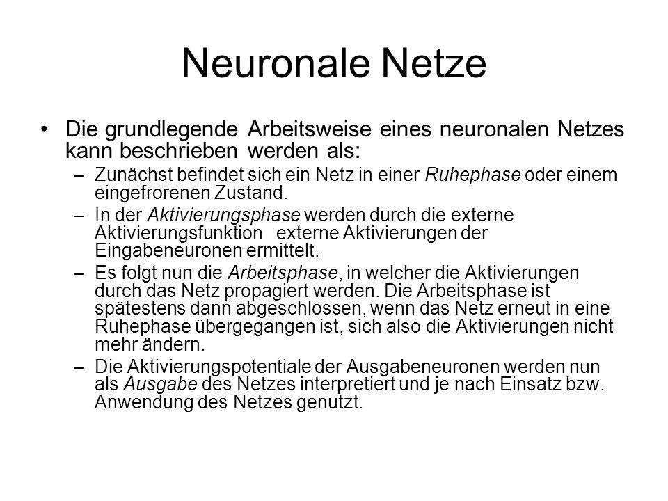 Neuronale Netze Die grundlegende Arbeitsweise eines neuronalen Netzes kann beschrieben werden als: