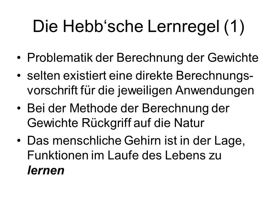 Die Hebb'sche Lernregel (1)
