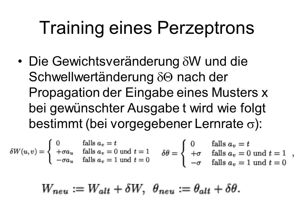 Training eines Perzeptrons