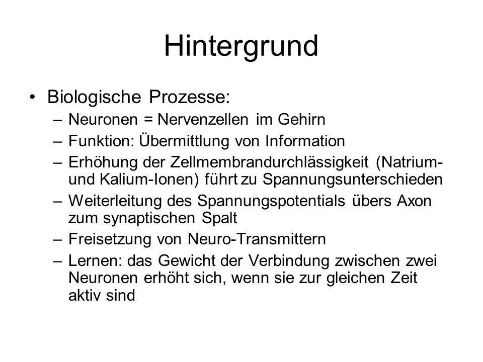 Hintergrund Biologische Prozesse: Neuronen = Nervenzellen im Gehirn