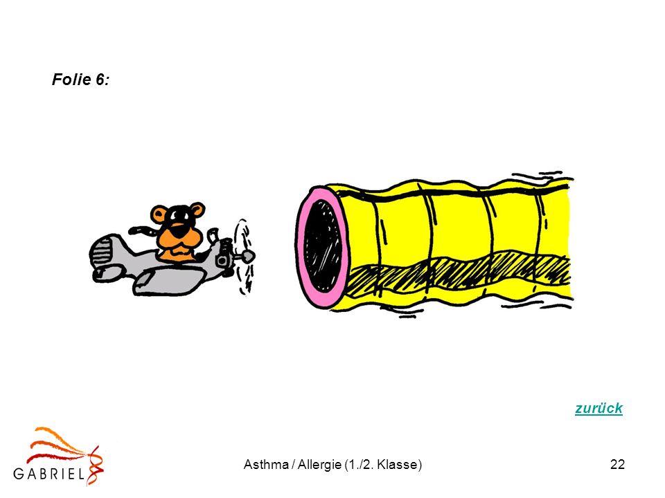 Asthma / Allergie (1./2. Klasse)