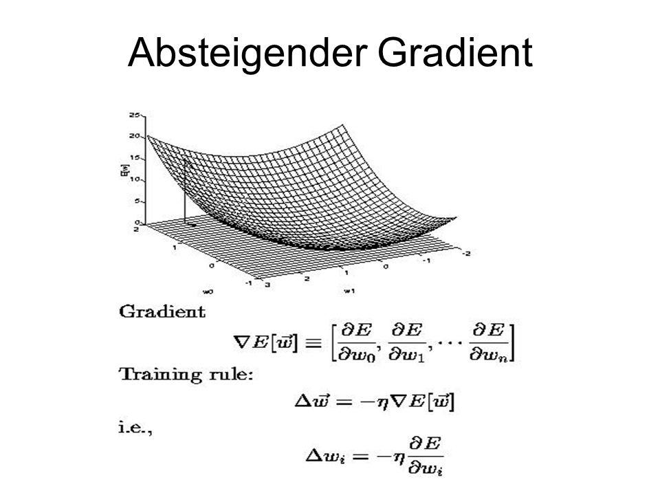 Absteigender Gradient
